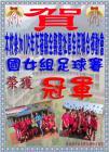 1051117---105年花蓮縣縣運國女組足球賽.JPG